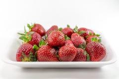 Fruit de fraise Photographie stock