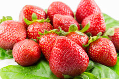 Fruit de fraise Photo libre de droits
