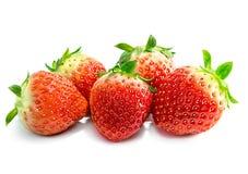 Fruit de fraises d'isolement Image stock