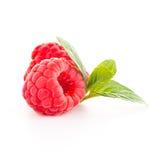 Fruit de framboise Image stock