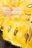 Fruit de Jack coupé en tranches Photo stock