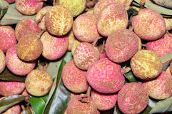 Fruit de litchi Photographie stock libre de droits