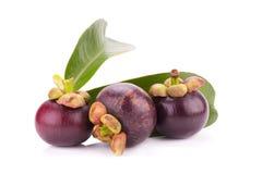 Fruit de mangoustan d'isolement sur le blanc Photographie stock libre de droits