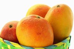 Fruit de mangue photographie stock
