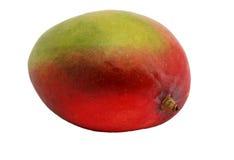 Fruit de mangue Image libre de droits