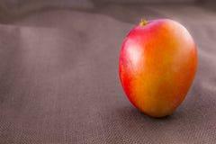 Fruit de mangue d'isolement sur le fond brun Photo libre de droits