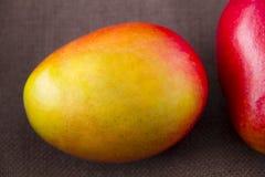Fruit de mangue d'isolement sur le fond brun Photos libres de droits