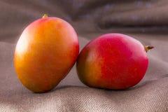 Fruit de mangue d'isolement sur le fond brun Image libre de droits