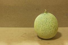 Fruit de melon Photographie stock libre de droits