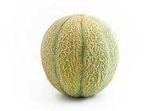 Fruit de melon droit Photos stock