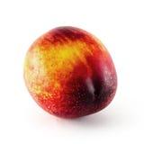 Fruit de nectarine d'isolement sur le fond blanc Images libres de droits