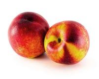Fruit de nectarine d'isolement sur le fond blanc Photos stock