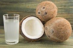 Fruit de noix de coco et eau - nucifera de Cocos Photographie stock libre de droits