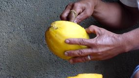 Fruit de papaye d'épluchage de femme avec le couteau banque de vidéos