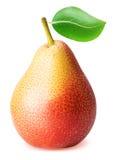 Fruit de poire avec la feuille d'isolement sur le fond blanc Photos libres de droits