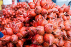 Fruit de Salak Photo stock