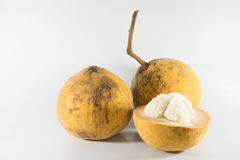 Fruit de Santol Image libre de droits