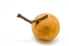 Fruit de Santol d'isolement sur le fond blanc photo stock