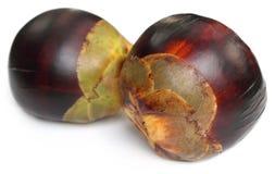 Fruit de Tal de sous-continent indien Image libre de droits