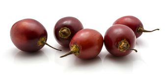 Fruit de tamarillo d'isolement Image libre de droits