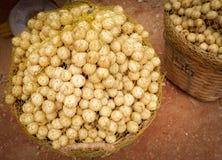 Fruit de Wollongong Photos stock