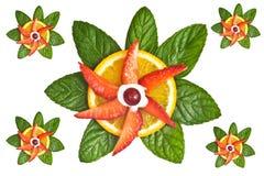 Fruit Decorative Elements Royalty Free Stock Photography