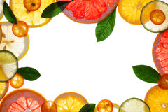 Fruit Design Borders Stock Photography
