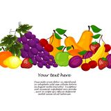 Fruit design borders isolated on white Royalty Free Stock Photo