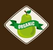 Fruit design Royalty Free Stock Image