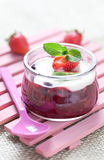 Fruit dessert stock image