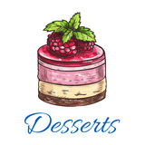Fruit dessert or berry cake with raspberry sketch. Fruit dessert or berry cake sketch icon with chocolate biscuit and sponge cake base, fruit cream filling and Royalty Free Stock Photos