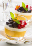 Fruit dessert stock photo