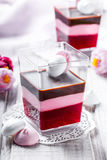 Fruit dessert Panna Cotta with candies in a glass on light background close up Royalty Free Stock Photos