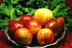 fruit dish with lettuce Stock Images