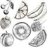 Fruit doodles seamless vector Royalty Free Stock Photography