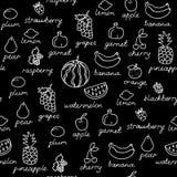 Fruit doodles seamless vector pattern. Stock Photos