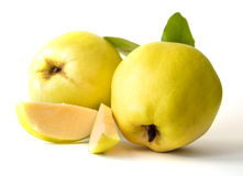 Fruit du sud de coing Images libres de droits