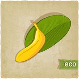 Fruit eco old background Stock Image