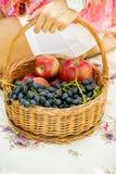 Fruit in een mand Royalty-vrije Stock Afbeelding