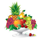 Fruit in een Vaas (vector) Vector Illustratie