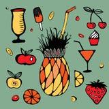 Fruit elements set. stock . cartoon design Stock Photography