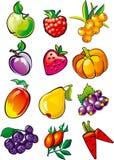 Fruit en bessen Stock Afbeelding