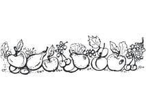 Fruit en bessen stock illustratie