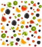 Fruit en bessen. Royalty-vrije Stock Foto's