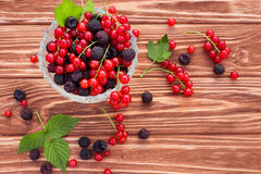 Fruit en Bessen Royalty-vrije Stock Afbeelding