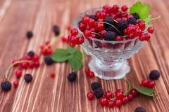 Fruit en Bessen Royalty-vrije Stock Fotografie