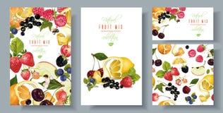 Fruit en bessen geplaatste banners Stock Afbeeldingen