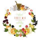 Fruit en bessenbanner Stock Afbeelding