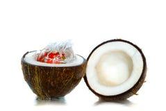 Fruit en coco stock foto