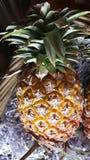 fruit entier d'ananas de la Thaïlande Photo libre de droits